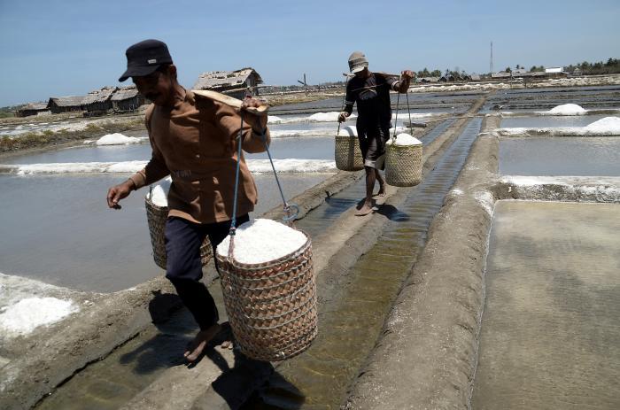 AIPGI minta pemerintah segera berikan rekomendasi impor garam, Alasan Garam Lokal tak Penuhi Syarat