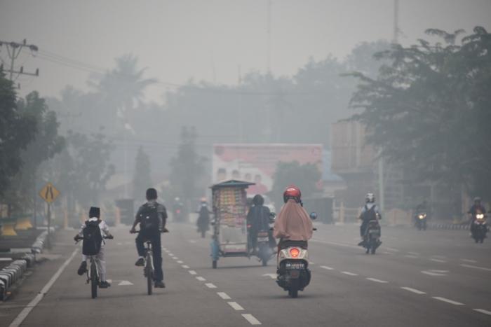 Ini alasan Kapolri heran usai tinjau kebakaran hutan dan lahan di Riau